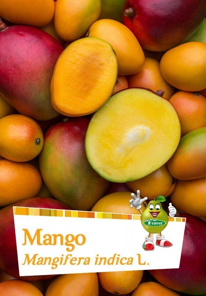 mango blog